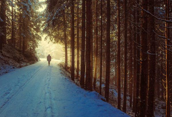 winter-walking_COP